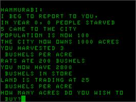 In game image of Hammurabi on the Acorn Atom.