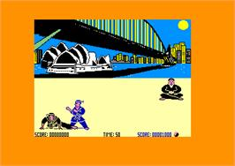 In game image of International Karate on the Amstrad CPC.