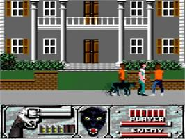 In game image of Wild Streets on the Amstrad GX4000.