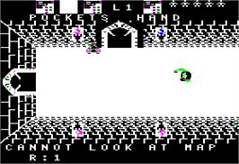 In game image of Alcazar: The Forgotten Fortress on the Apple II.