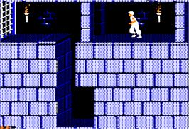 In game image of Prince of Persia on the Apple II.