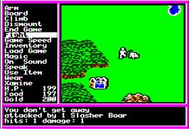 In game image of Questron 2 on the Apple II.