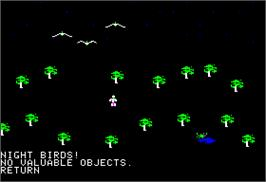 In game image of Rings of Zilfin on the Apple II.