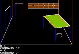 In game image of Same or Different on the Apple II.
