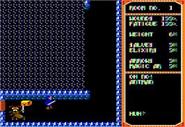 In game image of Temple of Apshai Trilogy on the Apple II.