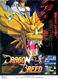 Advert for Dragon Breed on the Arcade.