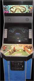 Arcade Cabinet for Battle Toads.