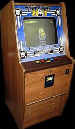 Arcade Cabinet for Pirate 2001.