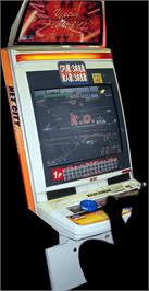 Arcade Cabinet for Virtua Fighter 4 Evolution.