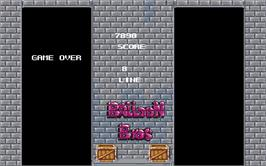 Game Over Screen for Balloon Brothers.