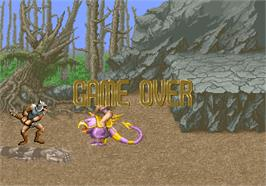Game Over Screen for Golden Axe.