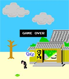 Game Over Screen for Karate Champ.