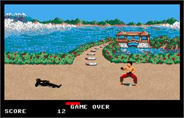 Game Over Screen for Ninja Mission.