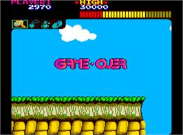 Game Over Screen for Wonder Boy.