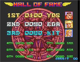 High Score Screen for Metamorphic Force.