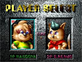 Select Screen for Raccoon World.
