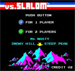 Select Screen for Vs. Slalom.
