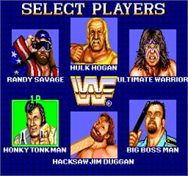 Select Screen for WWF Superstars.