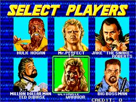 Select Screen for WWF WrestleFest.