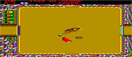 In game image of Bullfight on the Arcade.