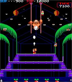 In game image of Donkey Kong 3 on the Arcade.