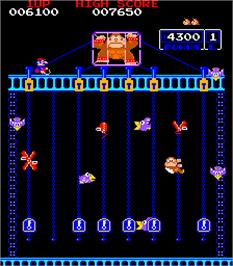 In game image of Donkey Kong Junior on the Arcade.