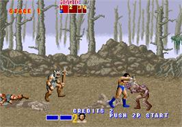 In game image of Golden Axe on the Arcade.