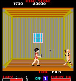 In game image of Lady Master of Kung Fu on the Arcade.