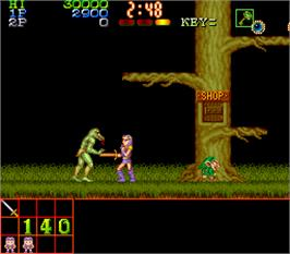 In game image of Legend of Makai on the Arcade.