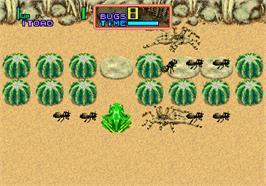 Thumb_Ribbit!_-_1991_-_Sega.jpg