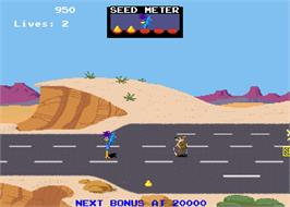 In game image of Road Runner on the Arcade.