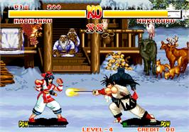 In game image of Samurai Shodown / Samurai Spirits on the Arcade.