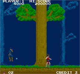 In game image of The Legend of Kage on the Arcade.