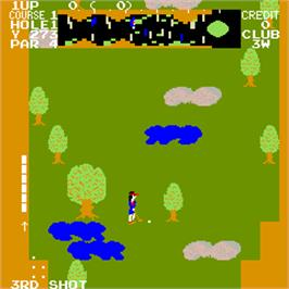 In game image of Tournament Pro Golf on the Arcade.