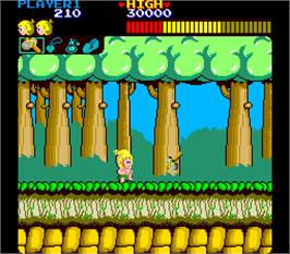 In game image of Wonder Boy on the Arcade.