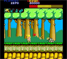 In game image of Wonder Boy Deluxe on the Arcade.
