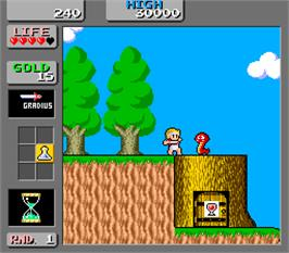 In game image of Wonder Boy in Monster Land on the Arcade.