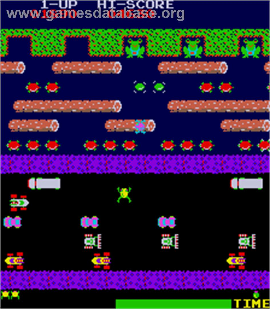 the frogger game