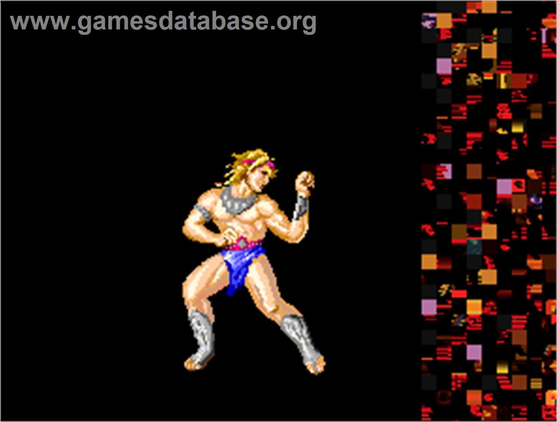 arcade fighting games online