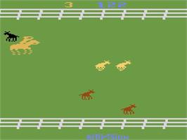 In game image of Stampede on the Atari 2600.