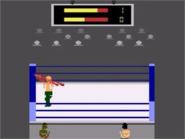In game image of Title Match Pro Wrestling on the Atari 2600.