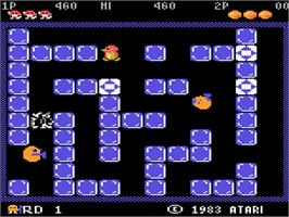 In game image of Pengo on the Atari 5200.