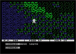 In game image of Questron on the Atari 8-bit.