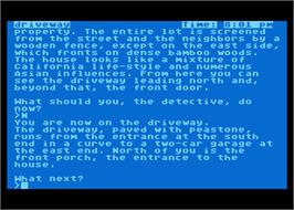 In game image of Witness on the Atari 8-bit.