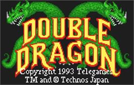 Title screen of Double Dragon on the Atari Lynx.