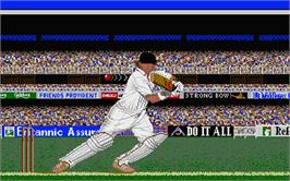 In game image of Allan Border's Cricket on the Atari ST.