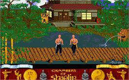 In game image of Chambers of Shaolin on the Atari ST.