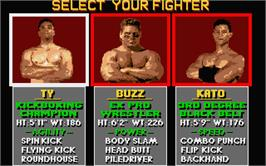 In game image of Pit Fighter on the Atari ST.