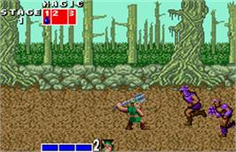 In game image of Golden Axe on the Bandai WonderSwan Color.