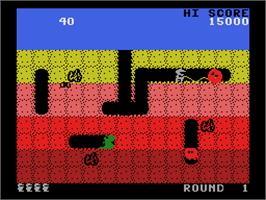 In game image of Dig Dug on the Coleco Vision.